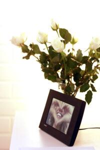 kuva ja ruusu